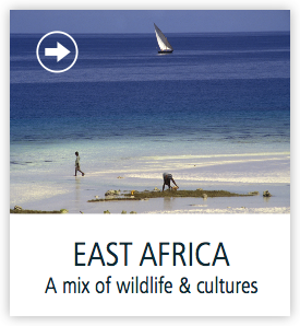 east-africa-safaris